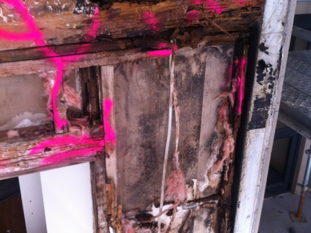 Decayed timbers marked up for removal